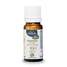 Synergie pour diffuseur Hiver - Neobulle