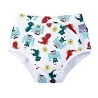 Culotte d'apprentissage dragon